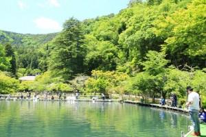 ルアー釣り場と場内風景 (1)