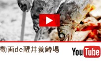 動画de醒井養鱒場